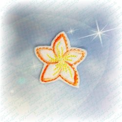 Plumeria  Feltie